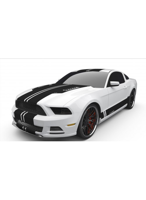Raceskinz® 2013-2014 Mustang RS50 D3NiAl™ Edition Premium Graphics Kit